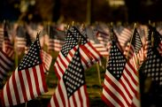 1024px-Americanflags