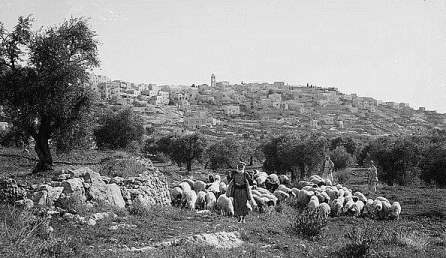 Bethlehem---Shepherds-and-flocks-in-the-foreground-