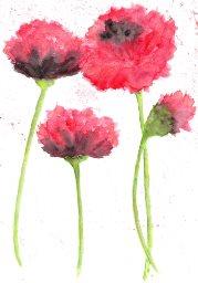 flowers Lax 3