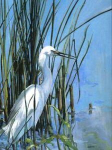 egret in reeds