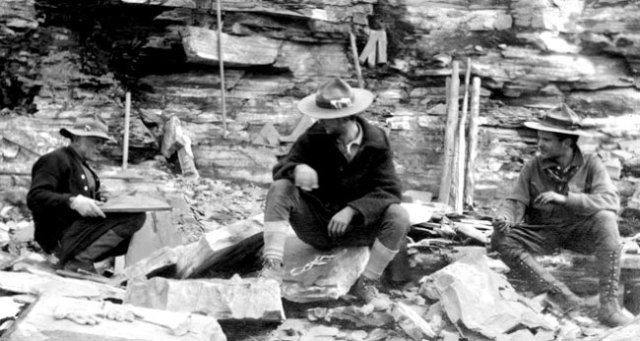 Charles, Sidney and Stuart Walcott at Walcott Quarry, 1913