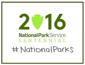 n pk sv-centennial_logo_600