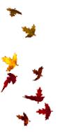 swirling-leaves