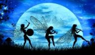 fairy-parade-by-liza-lambertini