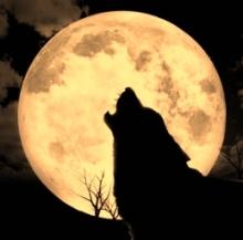full-wolf-moon