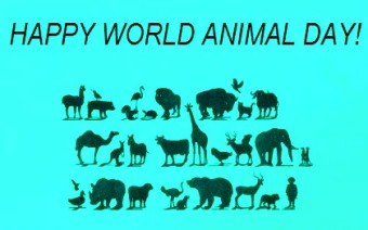 happy-world-animal-day