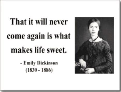 emily_dickinson_quote_never-come-again