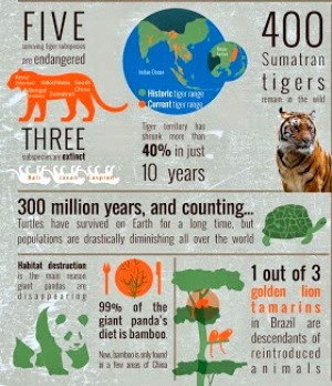 endangered-species-day-infographic
