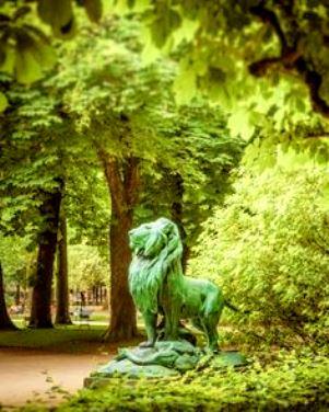 luxembourg-garden-chestmut-trees-paris