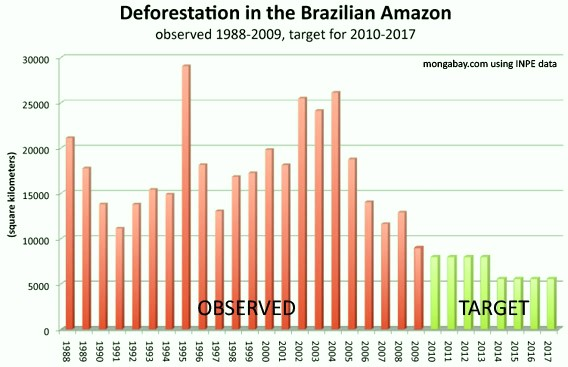 rainforest-target_deforestation_brazil