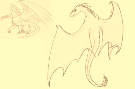 dragon-sketches
