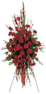gladiolus-funeral-flowers