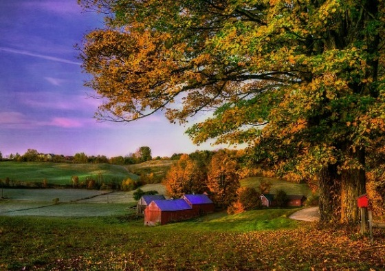 jenne-farm-autumn-in-new-england-by-joann-vitali