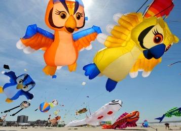 kite-day