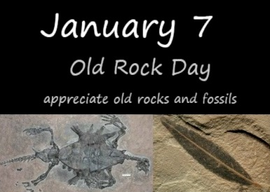 old-rock-day-fossils