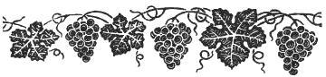 grape-vine-border