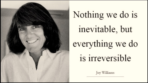 joy-williams-nothing-we-do-is-inevitable-quote