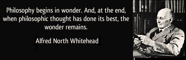 quote-philosophy-begins-in-wonder-alfred-north-whitehead