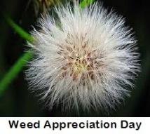 Weed Appreciation Day