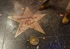 trump-star-1_1_[1]